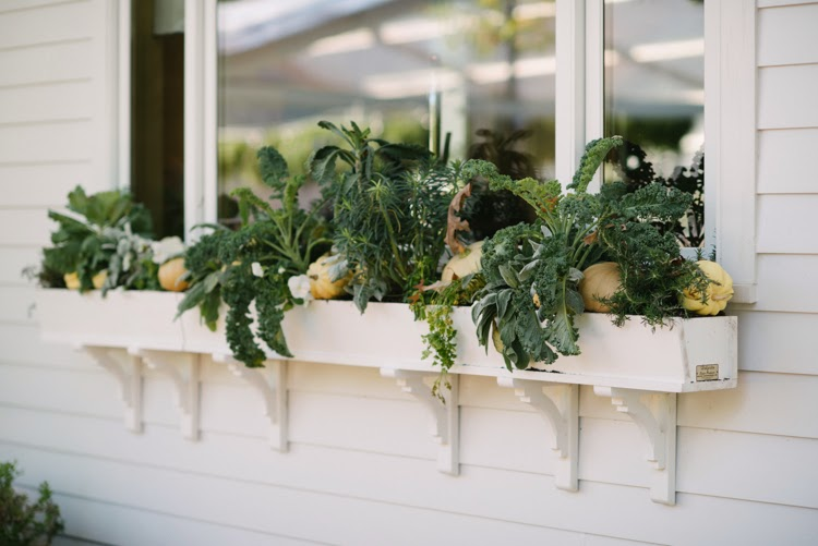 wedding day window box with green foliage