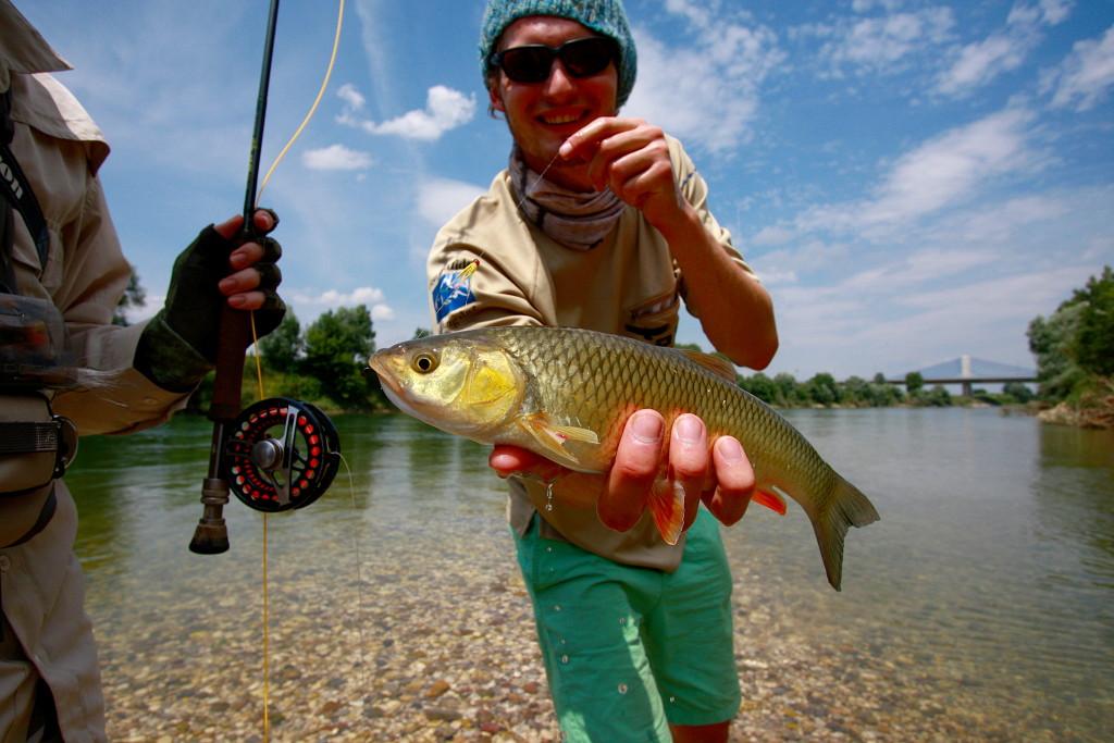Fishing in croatia and in the neighbourhood coarse fly for Fishing in croatia