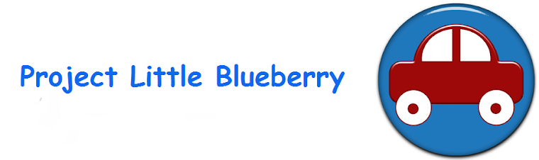 Project Little Blueberry