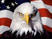 A ordem mundial criminosa (clique na foto)