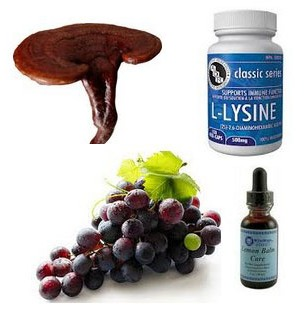 reishi mushrooms best treatment cold sores