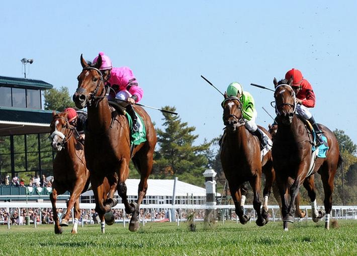horse racing result saturday