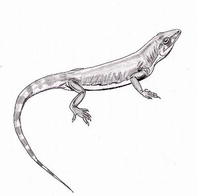 reptiles del carbonifero Archaeovenator