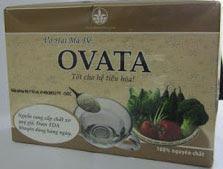Thảo dược Ovata : nguồn chất xơ tự nhiên 100%