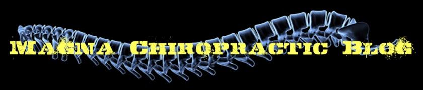 Magna Chiropractic Blog