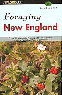 Foraging New England: Finding, Identifying, and Preparing Edible Wild Foods and Medicinal Plants from Maine to Connecticut
