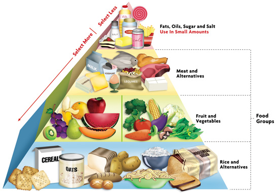 Home Econimics: Guidelines On Planning Balanced Meals