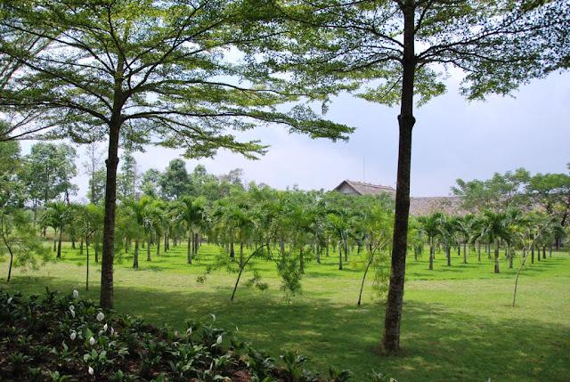 Giang Dien cascade, Dong Nai - Photo An Bui