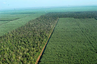 Hutan Taman Industri