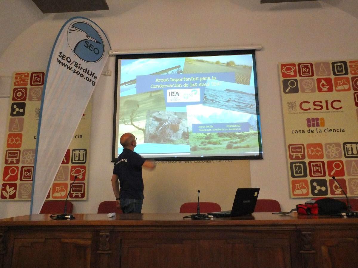 """Conferencia """"Áreas Importantes para la conservación de la aves, IBA"""". Por Jesús Pinilla (SEO/BirdLife), en el ciclo Martes Ornitológicos que el Grupo Local SEO-Sevilla organiza en el museo Casa de la Ciencia de Sevilla"""