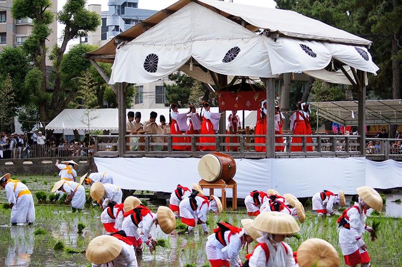 Festival Paling Unik Di Jepang