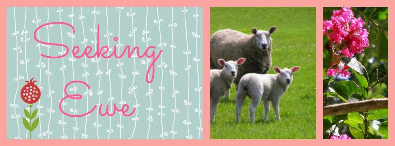 Seeking Ewe
