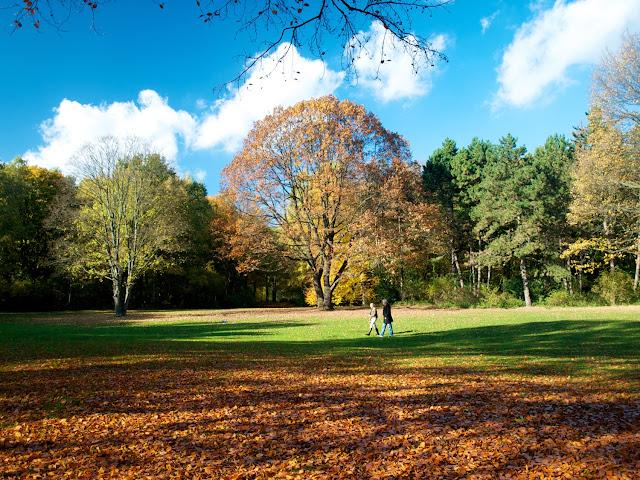 Caminando por Tiergarten