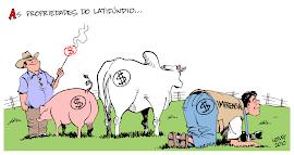 Latifúndios sonegam impostos