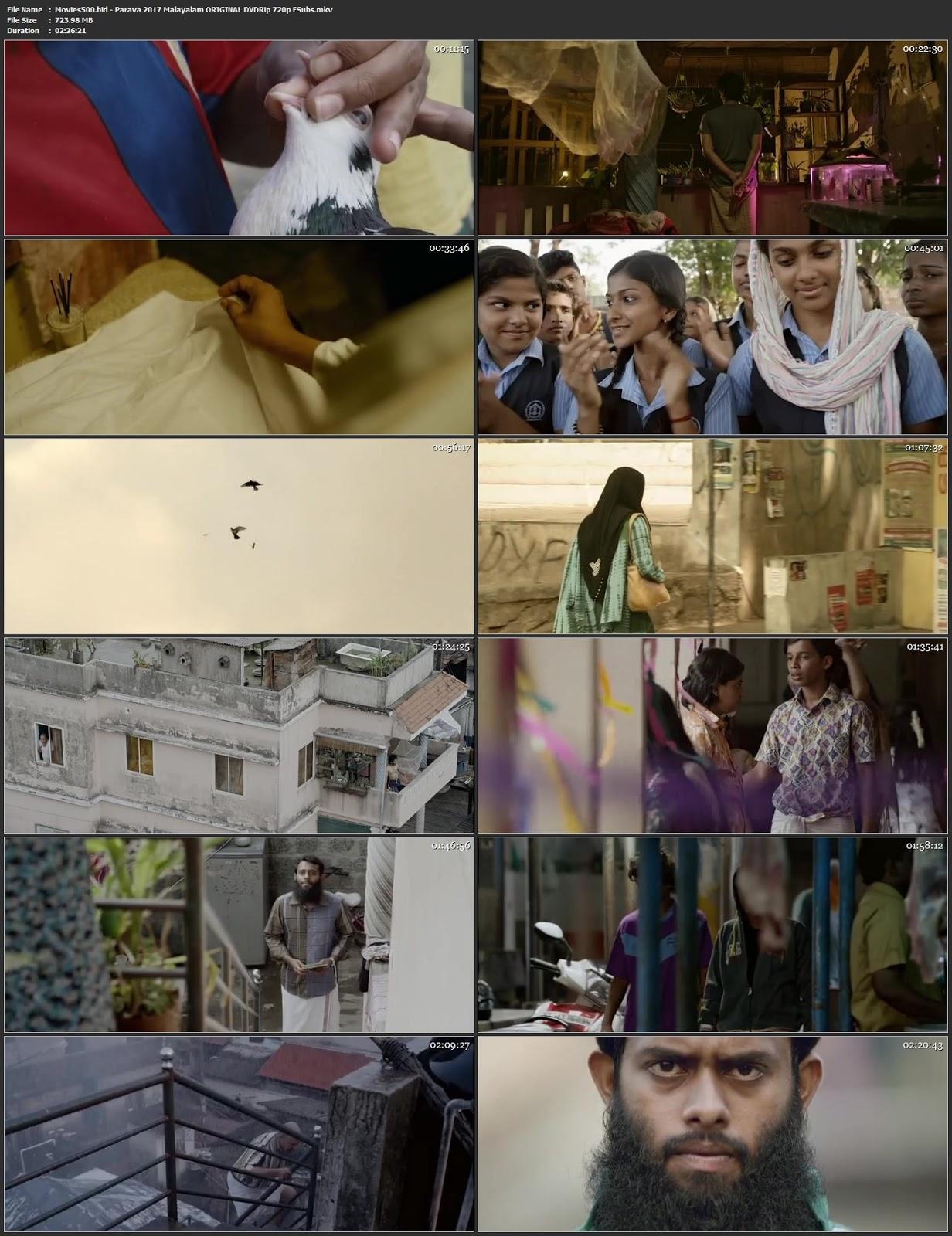 Parava 2017 Malayalam Original 400MB DVDRip 480p ESubs