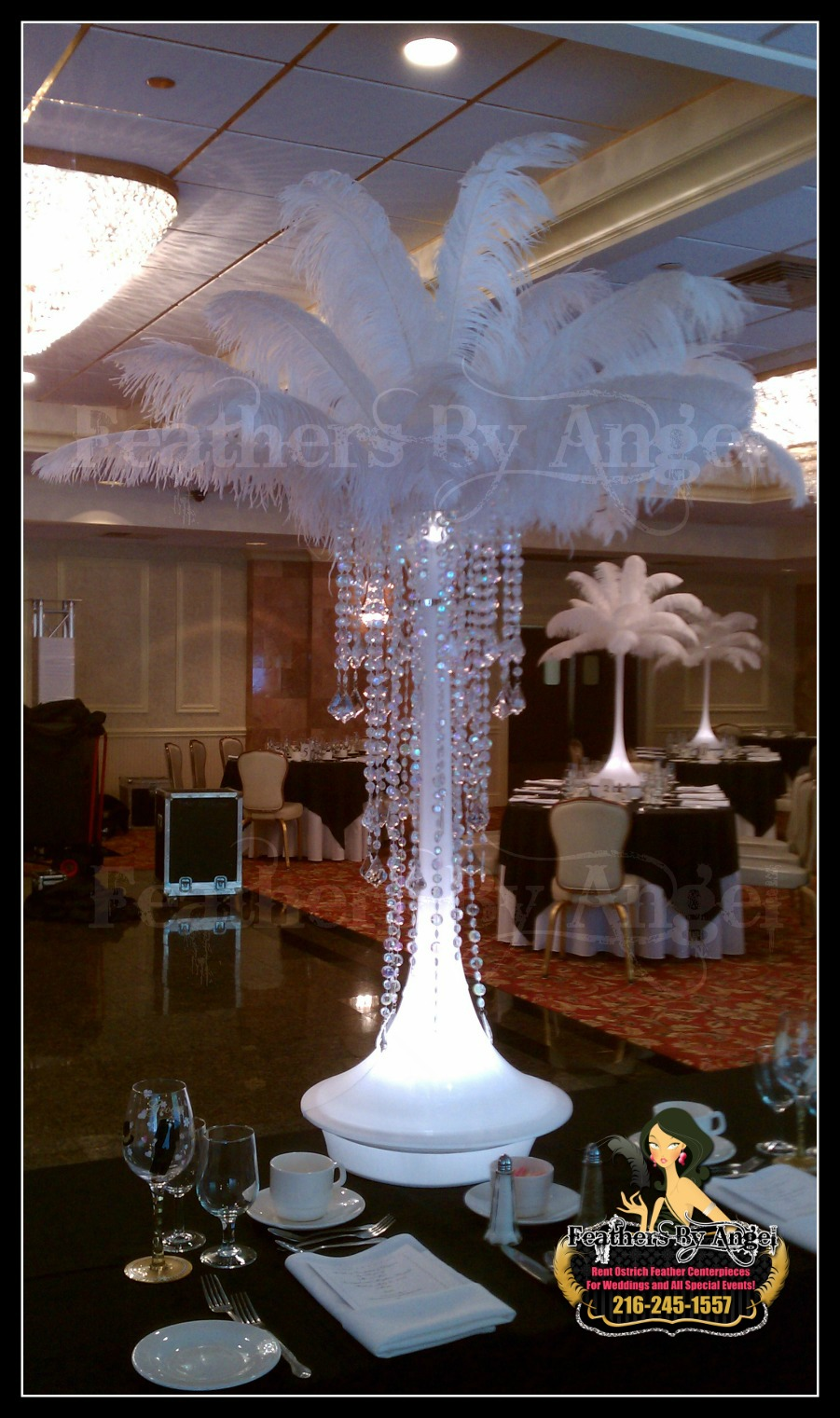 Feather centerpieces in chicago illinois