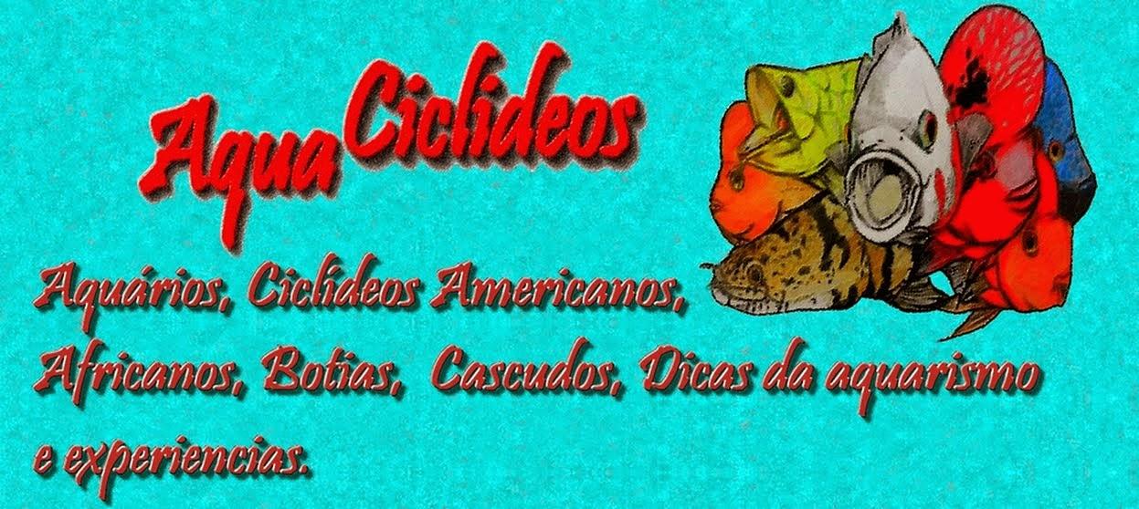 AquaCiclideos