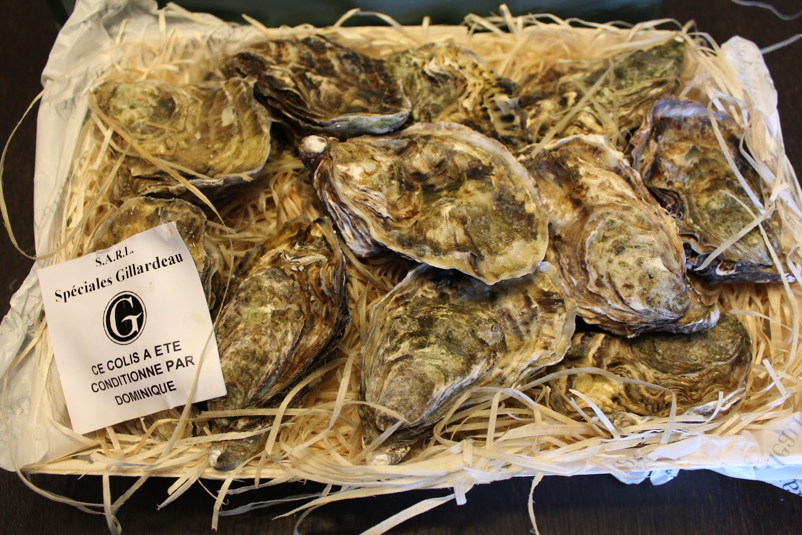 how to learn to love oysters