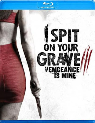 I Spit on Your Grave 3 Vengeance is Mine (2015) BluRay + Subtitle