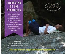 TALLER  BIENESTAR DE LOS SENTIDOS 2