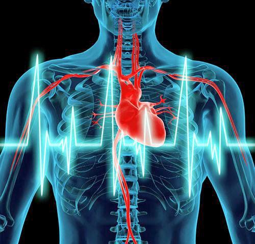 https://www.dropbox.com/s/ljpcauukjiw0po8/Cardiologia.pdf?dl=0