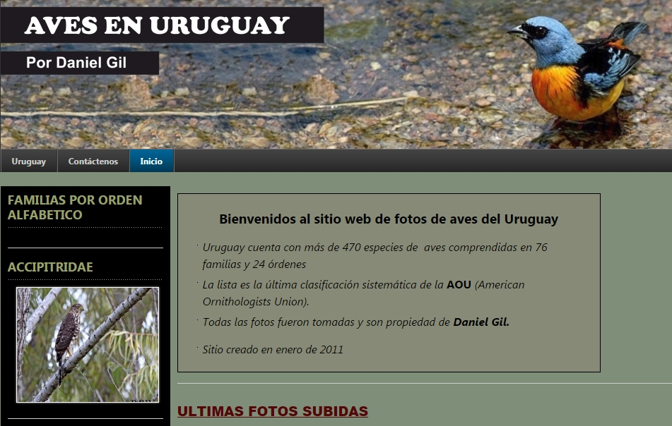 Aves de Uruguay