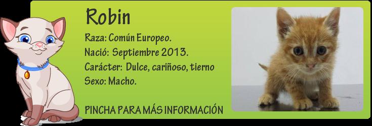 http://mirada-animal-toledo.blogspot.com.es/2013/11/robin-tirado-un-pozo.html