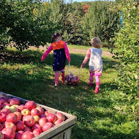Apple Picking Carlson Orchards MA New England Fall Events
