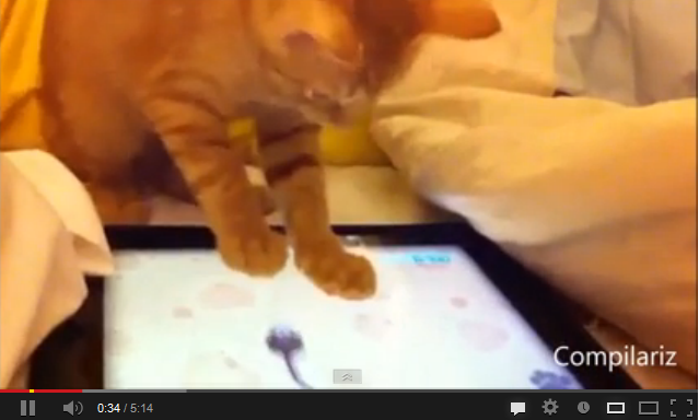 http://www.funmag.org/video-mag/funny-videos/animals-and-ipads-funny-video/
