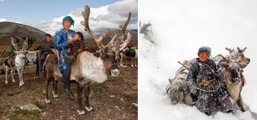 reindeer people Dukha people Hamid Sardar-Afkhami-9