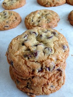 gourmet chocolate chip cookies
