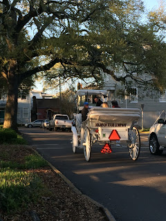 Romantic Carriage tour in Savannah historic district's Greene Square