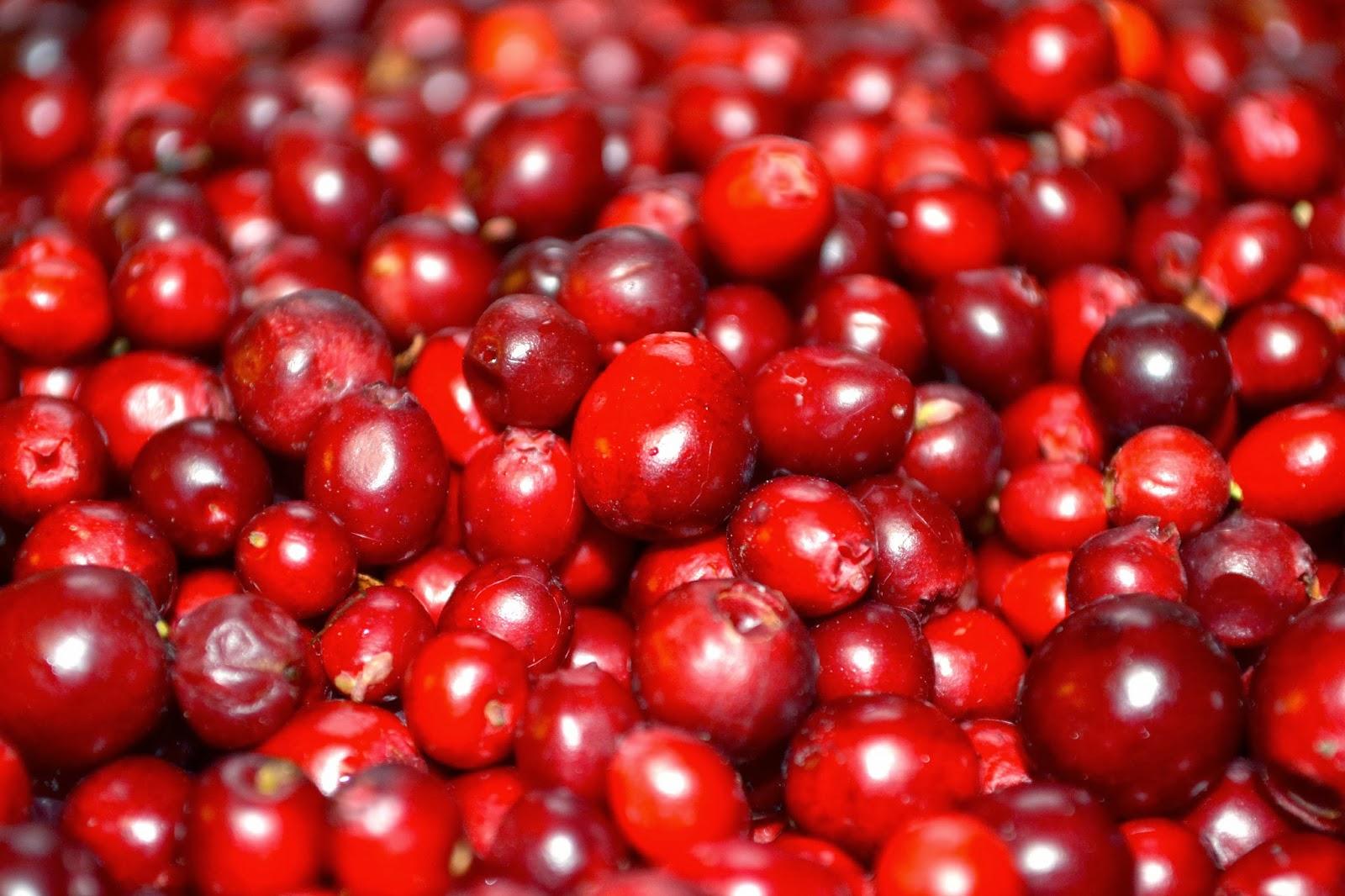 A Taste of Alaska: Cranberry Shortbread