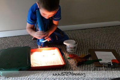 Boy using flashlight in worm color experiment: STEMmom.org