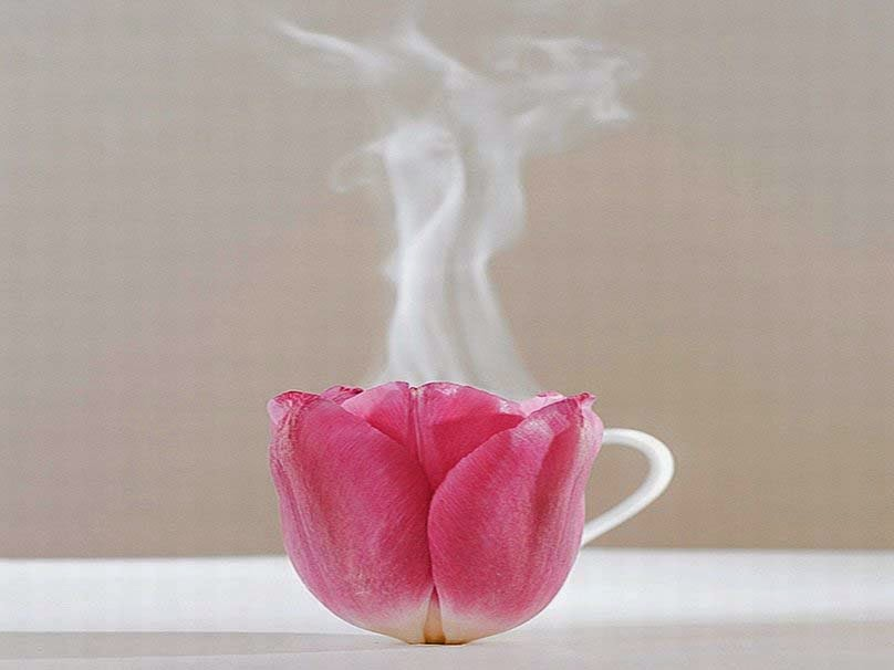rose-tea-picture