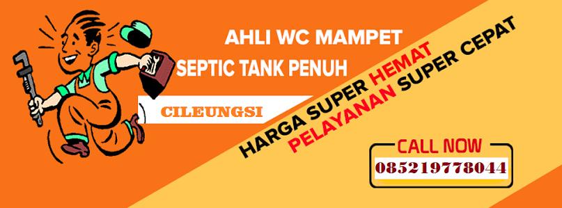 Sedot Wc Cileungsi Murah Tlp 085219778044