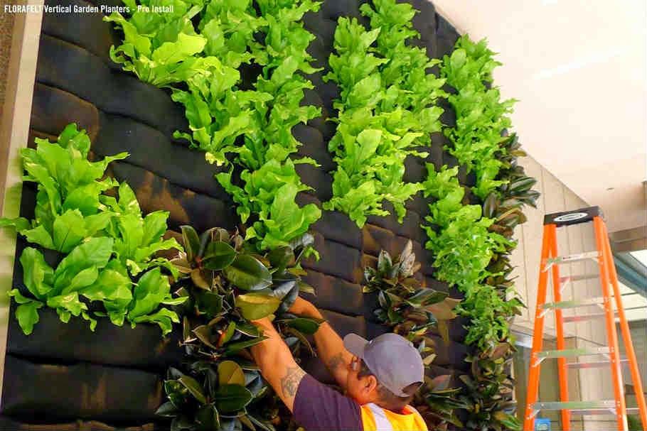 Fotos de jardines y agricultura vertical - Jardines verticales plantas ...