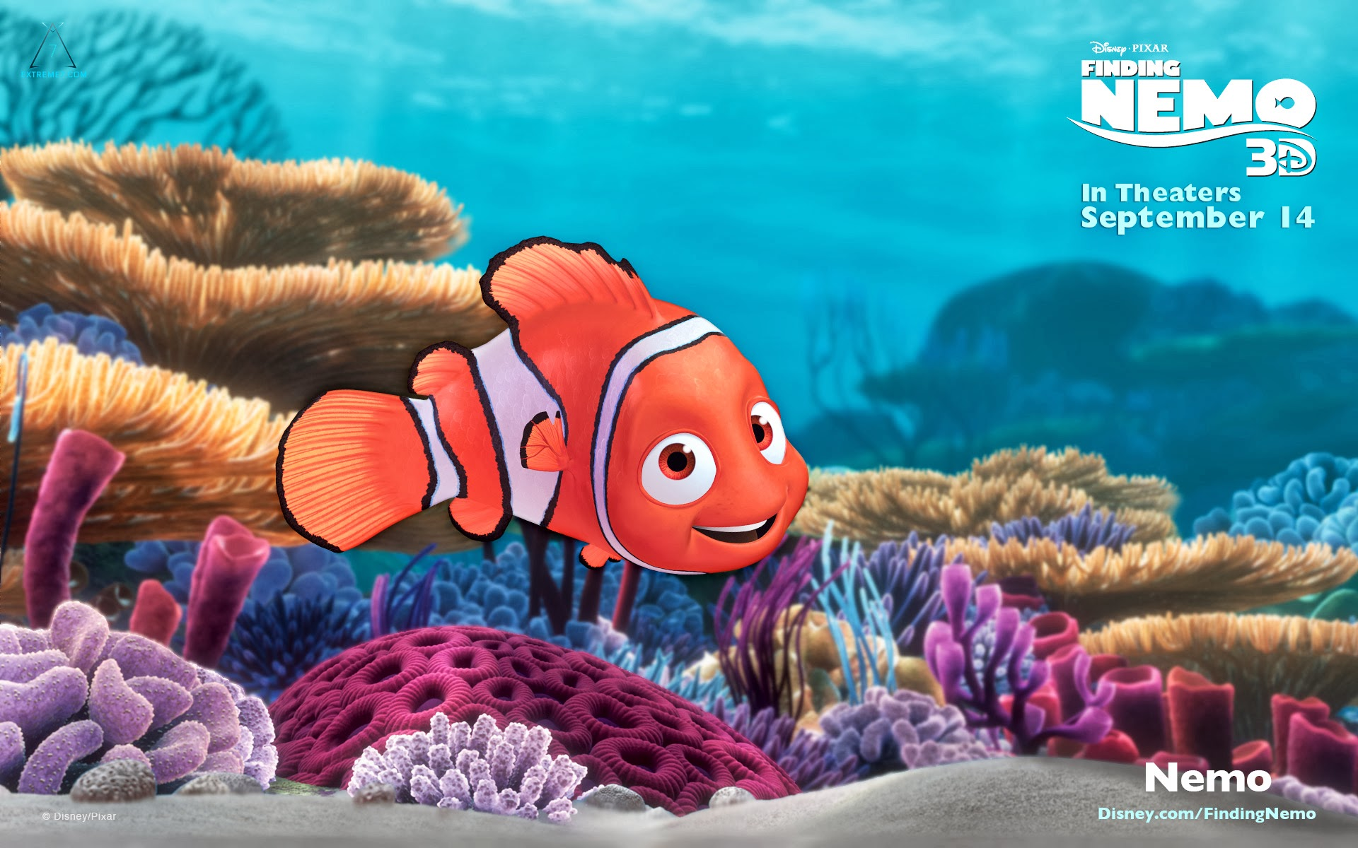 finding nemo hd wallpapers - photo #7