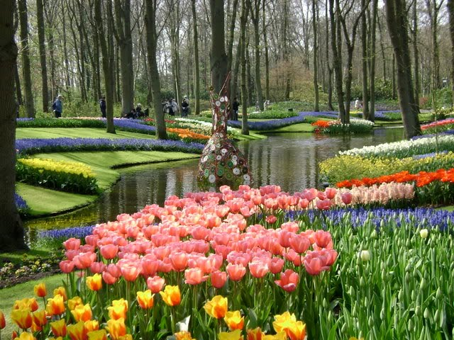 Aku Melihatmu di Taman Bunga yang Indah ...