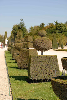 Bäume im Garten von Versailles