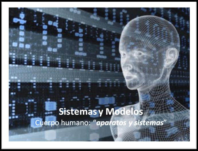 Sistemas y Modelos: aparatos y sistemas del cuerpo humano