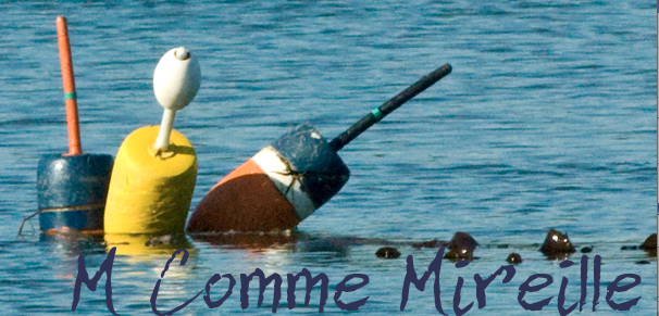 M Comme Mireille