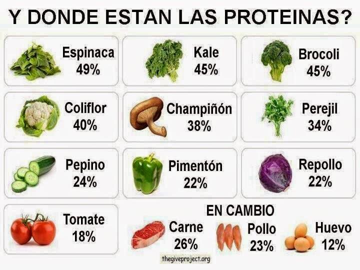 Beneficios de las Proteínas