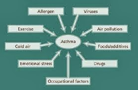 Asthma Triggers: How To Control And Stay Away