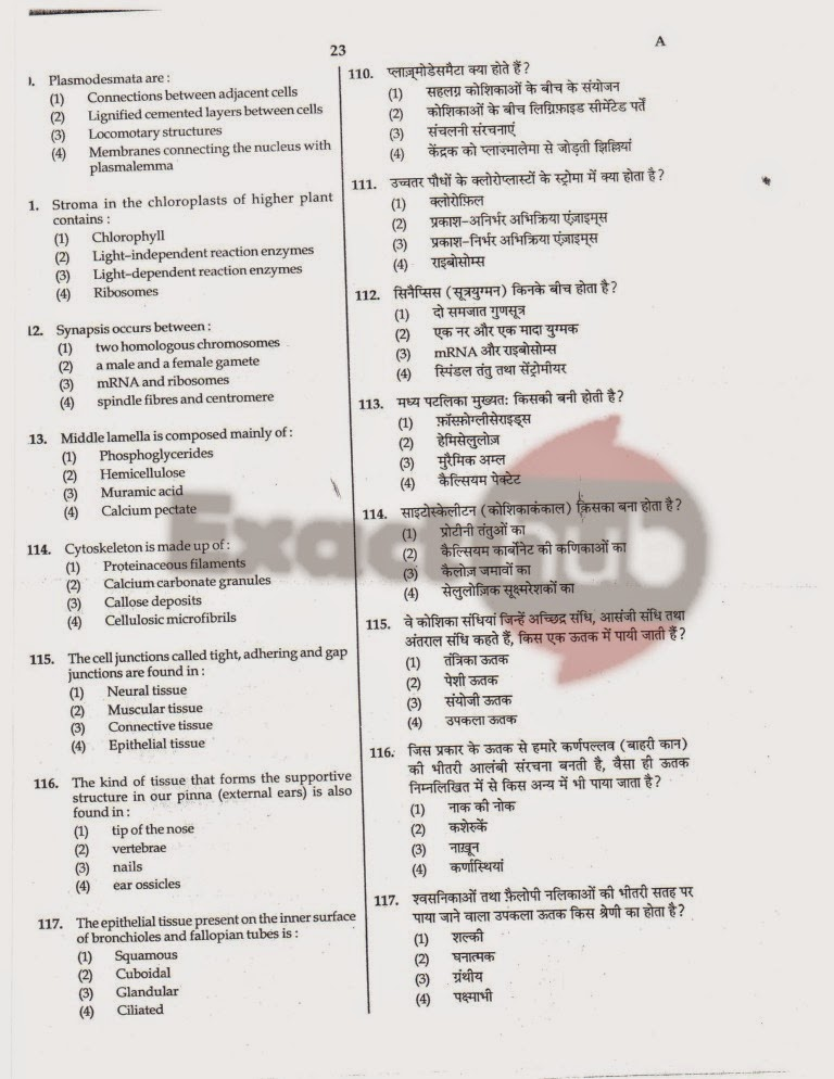 AIPMT 2008 Exam Question Paper Page 24