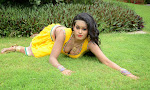 Gang of Gabbarsingh item Girl Nisha Hot stills-thumbnail