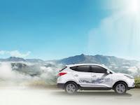 """Hyundai Siapkan Mobil Berbahan Bakar """"Kotoran"""""""