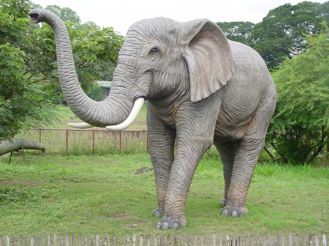 Big Elephant Trunk Up