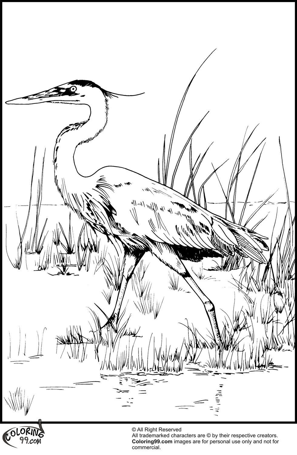 Stork Coloring Pages Minister Coloring