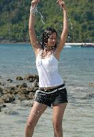 Hot, kaveri, jha, wet, navel, pics